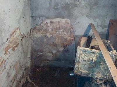 Удаление плесени со стен и потолка в гараже